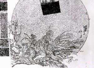 ciel-drago-constellation